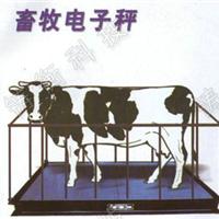 1T2T3T5T动物专用秤