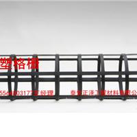 钢塑土工格栅四川青白江30KN有现货欢迎采购