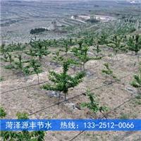 供应惠州桃树水肥一体滴灌设备成本