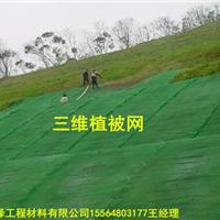 三维植被网如何施工和养护