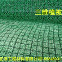 泰安正泽三维植被网专业技术最低价格