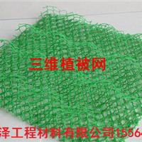 三维植被网泰安正泽多年生产经验质量可靠