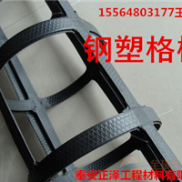 钢塑复合土工格栅80KN是几根钢丝的