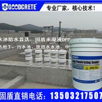 水池防水抗渗防腐  永凝液DPS防水剂