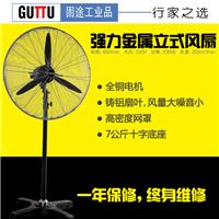 立式工业风扇 工业落地电风扇 650落地风扇