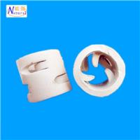供应优质陶瓷鲍尔环 陶瓷鲍尔环填料