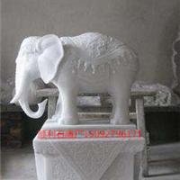 供应石雕大象,汉白玉寺庙大象。