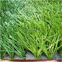 供应标准足球场人造草,广州塑料草皮