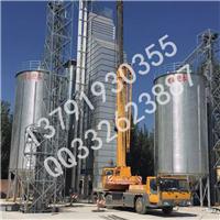 水泥储存钢板仓,江西粮食钢板仓,菠菜种子钢板仓
