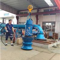 供应立式潜水轴流泵|天津立式潜水轴流泵