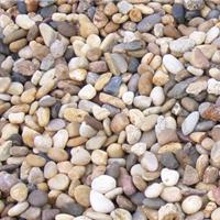 供应鹅卵石、豆石