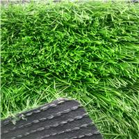 供应休闲景观人造草坪,厂家批发优质塑料草