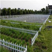 祥成厂家供应PVC园艺草坪塑钢护栏
