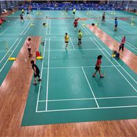桦木体育地板 体育馆健身房专用防滑地板