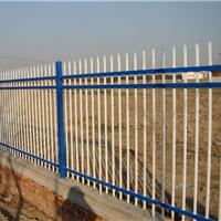供应优质镀锌管小区庭院锌钢围墙护栏网