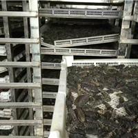 海产品烘干房运行安全可靠