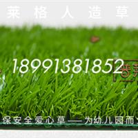 西安人工草坪,人造草坪,塑料草坪