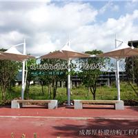 广元休闲伞膜结构