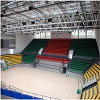 体育运动木地板 运动型木质地板