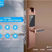 丽水智能锁品牌生产厂家