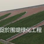苏州生态透水混凝土胶结料/透水路面