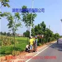 广西太阳能路灯整套配置太阳能路灯工作原理