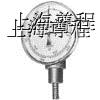 供应CZ-634 CZ-636固定磁性转速表