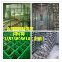 供应山东食用菌网格,蘑菇网架