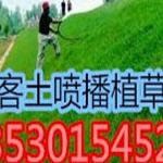 边坡绿化三维网客土喷播施工队!