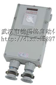 BDZ51-32A防爆断路器德力防爆电器有限公司