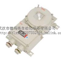 德力西防爆定制IIC级BDZ52防爆断路器加工