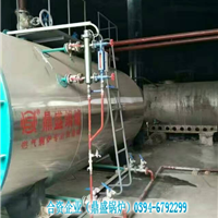 供应潍坊1吨燃气蒸汽锅炉