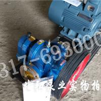 LC高粘度罗茨泵
