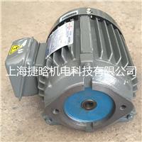 供应S.C品牌C01-43B0油泵电机