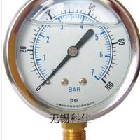 供应抗震双刻度压力表