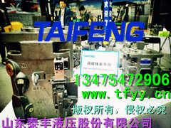 TFB1V63Y/1X-LRB2恒功率可替换YCY泵|柱塞泵