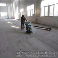 山东烟台鲁蒙工业聚脲耐磨阻燃地坪涂料