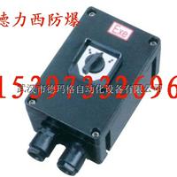 BDZ8050防爆防腐短路德力西防爆生产厂家