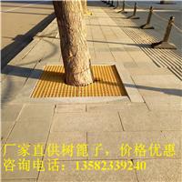 秦皇岛树坑篦子
