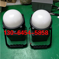 RWX319轻便式装卸灯 LED工作灯