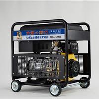 12kw大泽品牌永磁柴油发电机厂家直销
