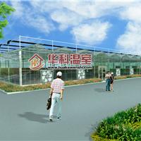 中国农业大学开封试验站连栋玻璃温室大棚