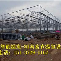 河南温室制作厂家、河南温室大棚建造-富农温室