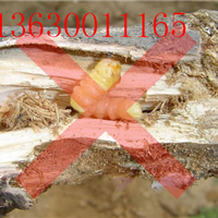 佛山生产厂家木材防虫剂,防虫杀虫剂价格