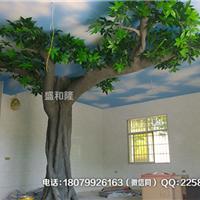 萍乡本地仿真树假树植物椰树梅花树榕树