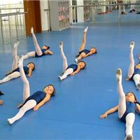 保定舞蹈室地板