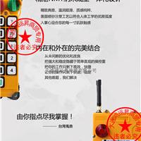 F24-10D禹鼎工业无线遥控器