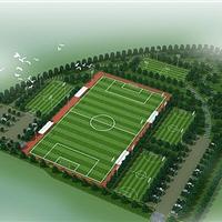 世界杯足球场-足球场人造草-耐磨抗低温