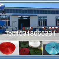 立式拉丝机生产厂家,PPPE塑料拉丝机挤出机一台多少钱