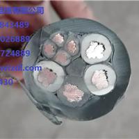 WGSF46-5.60mm单芯氟塑料F46绝缘F40护套 双钢丝铠装承荷探测电缆
